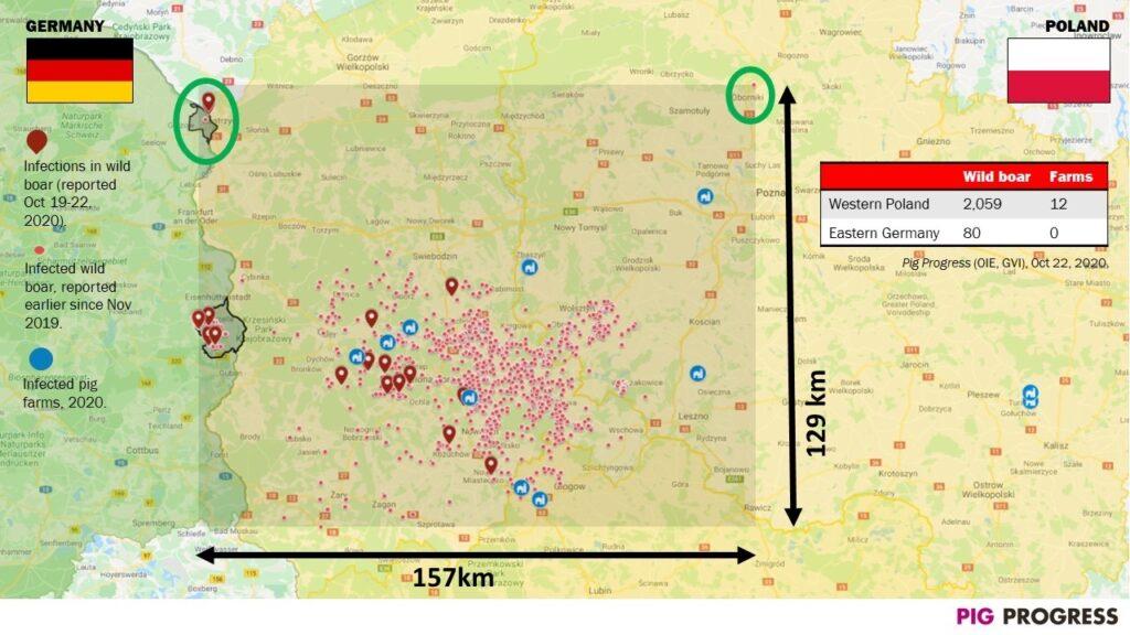Karte deutsch-polnisches ASP-Gebiet an der Grenze