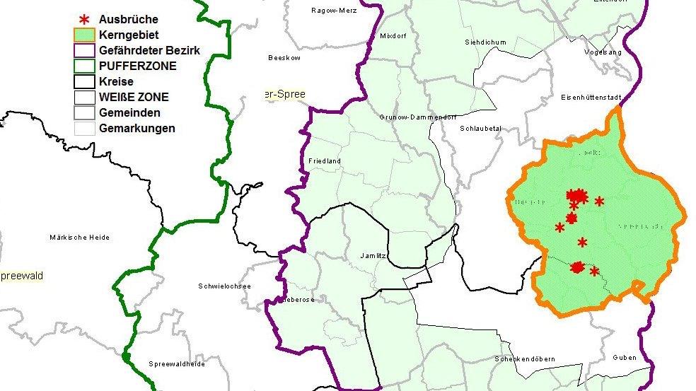 Karte des ersten Ausbruchsortes der Afrikanischen Schweinepest in Deutschland mit den eingezeichneten Restriktionsgebieten: dem Kerngebiet, der Weißen Zone, dem Gefährdeten Bezirk und der Pufferzone.