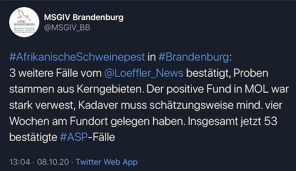 Tweet MSGIV Brandenburg 3 neue ASP-Fälle