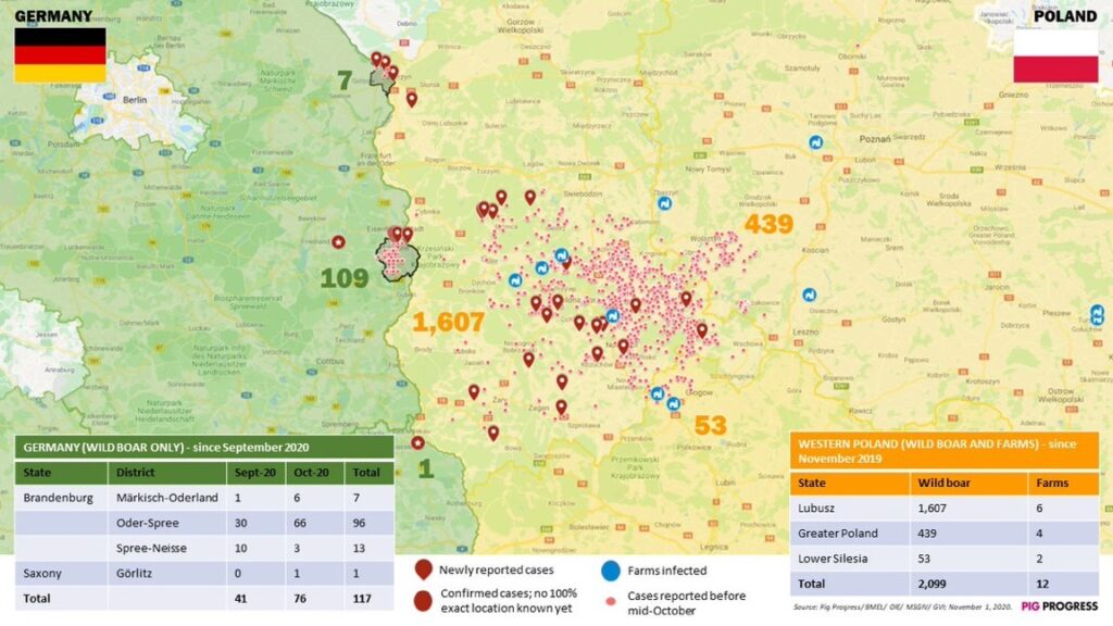 Karte der ASP-Situation an der deutsch-polnischen Grenze – Stand: 1.11.2020