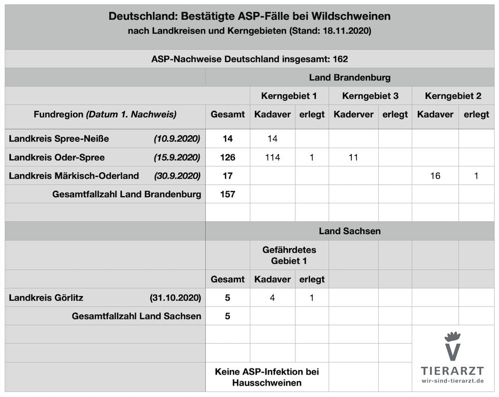 Tabelle: Bestätigte Fälle Afrikanischer Schweinepest in Brandenburg und Sachsen (Stand 18.11.2020)