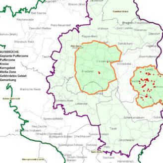 Karte der am meisten betroffenen ASP-Kerngebiete in Brandenburg