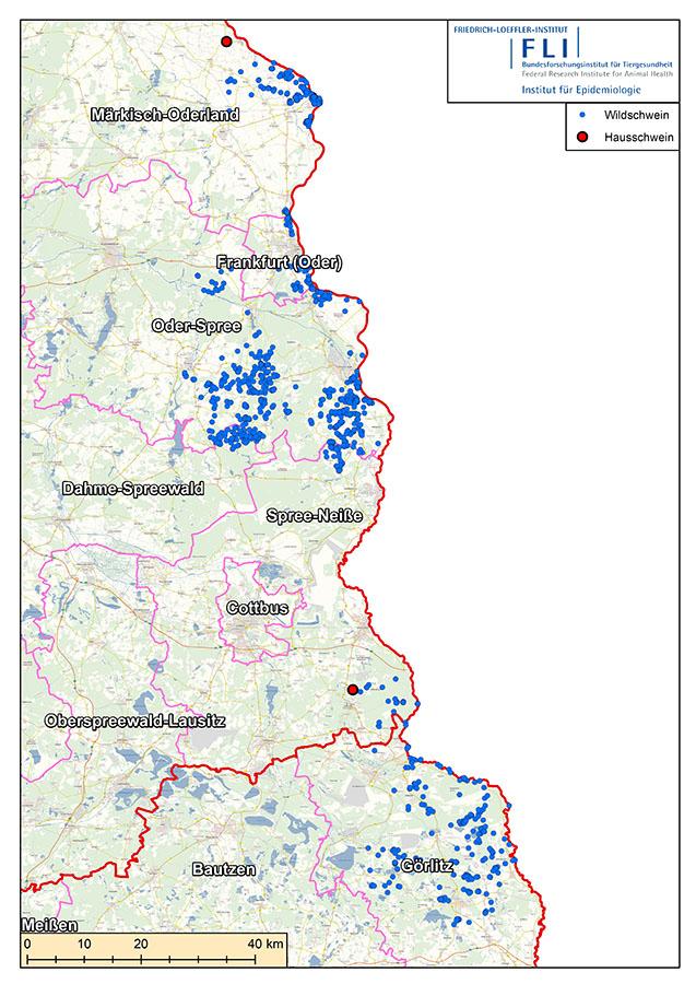 FLI-Karte Orte der ersten ASP-Ausbrüche bei Hausschweinen in Deutschland